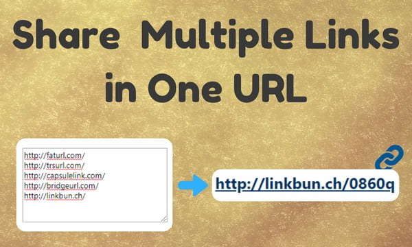 LinkBunch: Amazing Tool to Put Multiple Links Into 1 Link 3