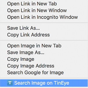 TinEye Browser